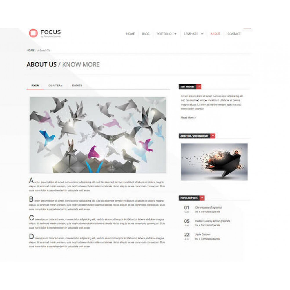 Web Sitesi HTML-CSS Tema FOCUS